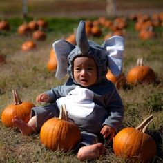 #elephant #baby #costumes SO CUTE!! Photo by: PS PhotoWorks