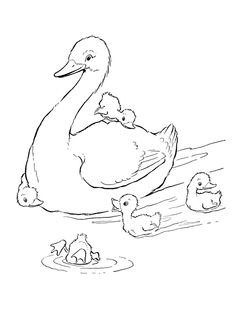 Ducks in the pond Coloring Page, free printable Duck coloring pages featuring hundreds of farm animals coloring page sheets. Farm Animal Coloring Pages, Coloring Pages To Print, Coloring Book Pages, Free Coloring, Coloring Pages For Kids, Cartoon Wallpaper Hd, Hd Wallpaper, Printable Coloring, Colorful Pictures