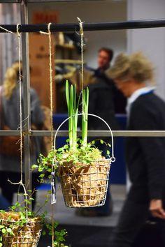 Formex 2016 - på spaning efter våren, del II   www.var-dags-rum.se
