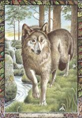 Druid Animal Oracle produced by Stephanie Carr-Gomm & Philip Carr-Gomm & Will Worthington.