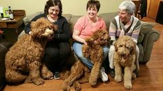 This is are 1 year birthday.  Simon, Dottie and Ralphie with their moms