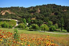 http://www.priceypads.com/magnificent-santa-ynez-ranch-estate-25000000/