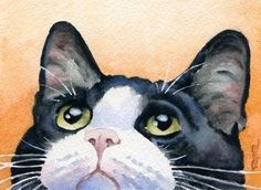 """Tuxedo Cat"" Art Print Signed by Artist DJ Rogers by David J. Rogers Fine Art, http://www.amazon.com/dp/B0036CYK50/ref=cm_sw_r_pi_dp_.WGKqb1KAEVK0"