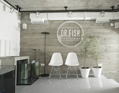 Dr.Fish Spa - Belgrade, Serbia - 2013