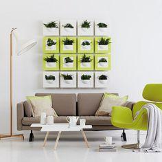 ¡5 Originales accesorios para tus paredes!