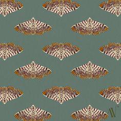 Moth 07 Crambid moth Taquinata tirsiana (in italics) 30 Day Drawing Challenge, Pretty Cool, Inktober, Moth, Butterfly, Patterns, Drawings, Illustration, Block Prints