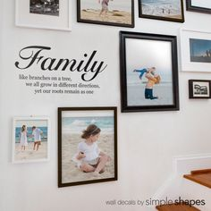 Family like branches on a tree, we all grow in different directions, yet our roots remain as one Wall words by Simple Shapes. This quote is a perfect complementary piece to our Family Tree Wall Decal shown here: https://www.etsy.com/listing/112848258 Overall Layout Measures (approx):