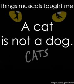 So first your memory I'll jog....and say a cat is not a dog!