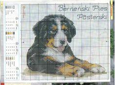 Gallery.ru / Фото #1 - собаки, схемы вышивок из интернета - poodel Cross Stitch Pillow, Cross Stitch Charts, Cross Stitch Designs, Cross Stitch Patterns, Cross Stitching, Cross Stitch Embroidery, Embroidery Patterns, Dog Chart, Dog Pattern