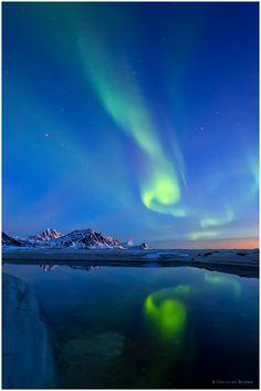 The Northern Lights, Lofoten, Norway, by Christian Bothner.