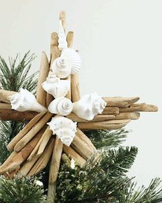 Vintage Decor Diy DIY Driftwood Shell Tree Topper by Martha Stewart. Featured on Completely Coastal. - Grace your Christmas tree with a striking coastal or nautical topper. Christmas Tree Napkin Fold, Diy Christmas Tree Topper, Diy Christmas Star, Grinch Christmas Tree, Unique Christmas Trees, Beach Christmas, Coastal Christmas, Christmas Tree Themes, Holiday Crafts