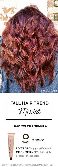 Merlot Hair Color by Erica Stevens with Oway Ammonia-Free Hair Color: Hcolor | Featured in Simply Organic Beauty's 2016 © Fall + Winter Hair Color Formula Guide #Oway #SimplyOrganicBeauty #FallTrends
