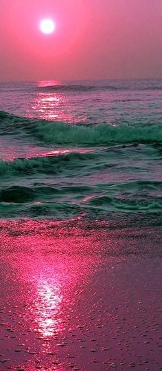 beach pink discountattractions.com