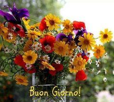 Buongiorno con un fiore