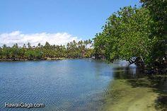 Makaiwa Bay Fish Pond, Big Island
