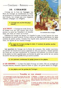 Manuels anciens: Orieux, Everaere, Leçons de choses CE (1952) Study French, Teaching French, Biology, French Stuff, English, Science, Activities, Education, Joseph