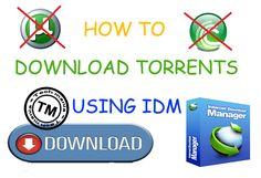 Download-Torrents-Using-IDM