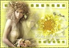 La festa della Donna: March 8 is International Women's Day. In Italy this is a day men give bunches of mimosa to the women in their lives.  The flowers are bright yellow and fragrant. The custom started in Italy, some say in Rome in 1946. Women have since begun to give mimosa to each other. The flowers are a sign of respect for and an expression of solidarity and support for oppressed women worldwide.