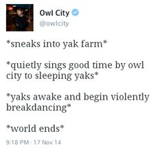 owl city twitter posts - Google Search