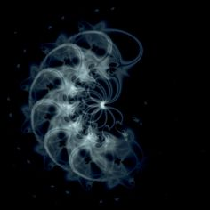medusa 5J-p3 by mauxuam.deviantart.com  #abstract #fractal #fractals #trippy #psychedelic