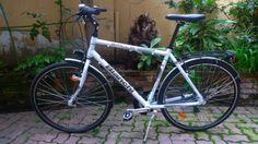 http://torino.bakeca.it/sport-tempolibero/bianchi-spillo-rubino-uomo-ba8260745855