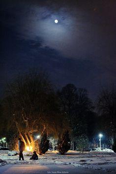 Peisaj de Iarna, si o luna plina ascunsa printre nori :) Parcul Bazilescu, București Foto Vasile Mihai-Antonio Moon, Celestial, Sunset, Outdoor, The Moon, Sunsets, Outdoors, Outdoor Living, Garden