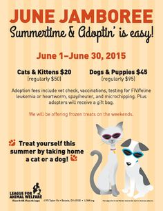 Half-price dog and cat adoptions ALL MONTH LONG!