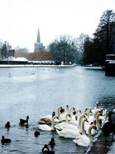 The Cold River Avon