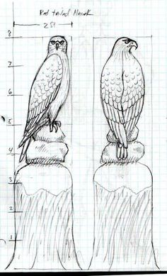 How Carve A Wooden Red Tailed Hawk Facebook