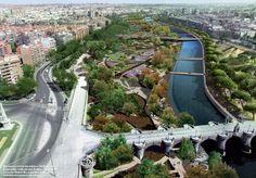 #Exterior #moderno #paisajismo via @planreforma #plantas #arboles