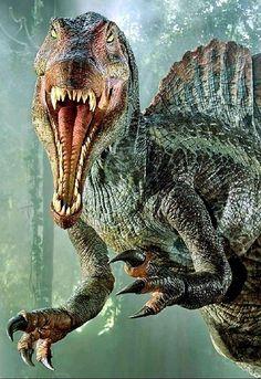 Spinosaurus est le plus gros prédateur terrestre ayant jamais existé Dinosaur Images, Dinosaur Pictures, Dinosaur Art, Dinosaur Fossils, Jurassic Park Trilogy, Jurassic Park 3, Blue Jurassic World, Prehistoric Dinosaurs, Prehistoric World