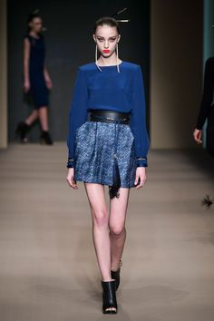 http://www.elisabettafranchi.it/index.php/gallery/look-7-fashion-show-fw-15/