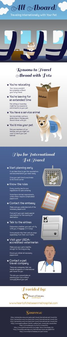 If you're planning to take your pet abroad, you need to talk to the airline about how your pet will be flying with you. Some people actually ship their pets as cargo separately from their own flights. Learn more about international pet travel in this infographic.