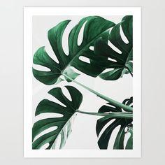 Monstera Leaves Plant Green Scandinavian Minimal Modern Wall art Art Print by scandihome Botanical Wall Art, Botanical Prints, Botanical Posters, Leaf Prints, Wall Art Prints, Poster Prints, Framed Prints, Safari Photo, Impressions Botaniques