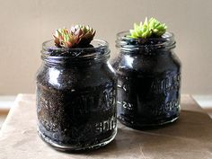 Introduce the little ones to gardening using mason jars. Similar to pots, mason jars can be cared for indoors and don't require as much maintenance as an outdoor garden. Plus, you don't have to wait until the Summer to start this project. %0ASource: Flickr user PlantedPots