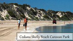 The Voyage of Rejuvenation to Ceduna Shelly Beach Caravan Park - Xtend Outdoors Caravan Parks, Forest Glen, Coastal, Waves, Outdoors, Australia, Vacation, Beach, Travel