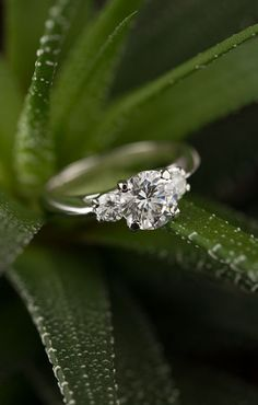 Moissanite engagement ring. Engagement rings. Moissanite jewelry. Bridal ring. Unique engagement ring. #engagement #engagementring #wedding #proposal #howheasked #couplegoals #bridalring #moissanite #bridaljewelryringsunique