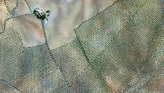 Olive Tree Plantation – Córdoba, Spain 37.263212022°, -4.552271206°