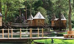 Blue Forest enchants again with a new treehouse complex in Surrey.
