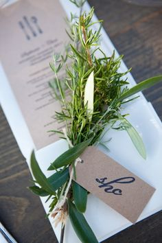 Olive branch + Rosemary
