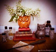 Potter Frenchy Party - Harry Potter DIY decoration owls - hiboux décoratifs