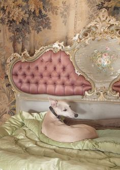 Design im Rokoko Stil – Reminiszenz an die prachtvollsten Kunstepochen - Decor Sweet Home, Boudoir, Paper Mulberry, Rococo Style, Upholstered Beds, French Decor, Old World, Cherry Blossom, Painted Furniture