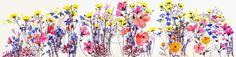 Wildflowers by Hannah Harding