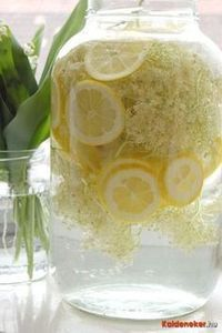 Home Made Juice – Health In A Glass - Find Fun Art Projects to Do at Home and Arts and Crafts Ideas Creative Desserts, Creative Food, Clean Eating For Beginners, Hungarian Recipes, Hungarian Food, Cool Art Projects, Elderflower, Recipes From Heaven, How To Cook Quinoa