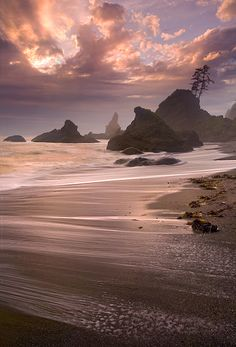 Olympic National Park, Washington#Repin By:Pinterest++ for iPad#