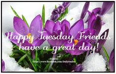 Tuesday image #5240 - Happy Tuesday Friends, have a great day! -  View popular images and share on Facebook, WhatsApp and Twitter.