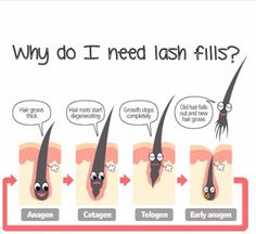 Cute little demonstration as to why you need Lash fills ! :) Inspirations Aesthetics London Ontario More