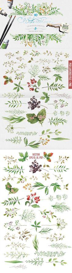 Watercolor leaves. Watercolor Flowers. $13.00