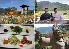 St. Francis Winery and Vineyards.  We LOVE this winery.  Great limited production reds.  Don't miss the food and wine pairings.