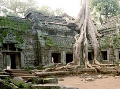 The Cambodian jungle has pretty much devoured the Ta Prohm temple, but the strangely compelling remains (which had a guest role in Lara Croft: Tomb Raider) make it a popular tourist attraction.